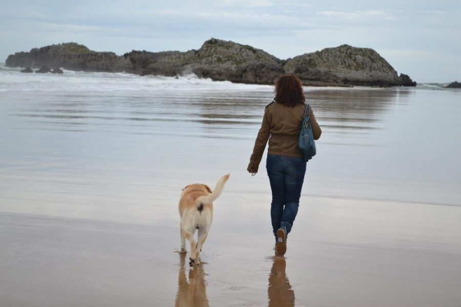 Esther y Frodo en Playa de Ris